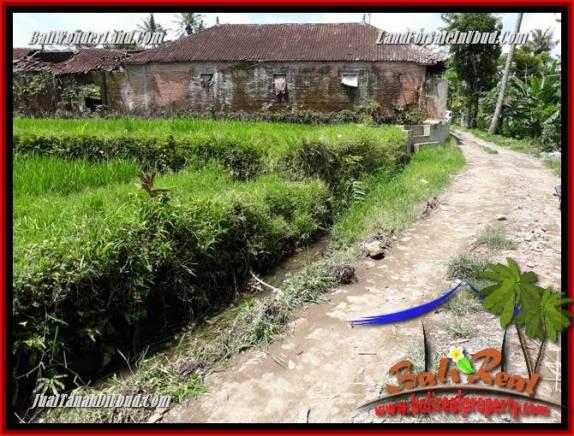 Tanah Dijual di Ubud 24 Are View sawah