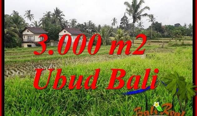 Tanah Murah di Ubud Dijual 30 Are di Ubud Tegalalang