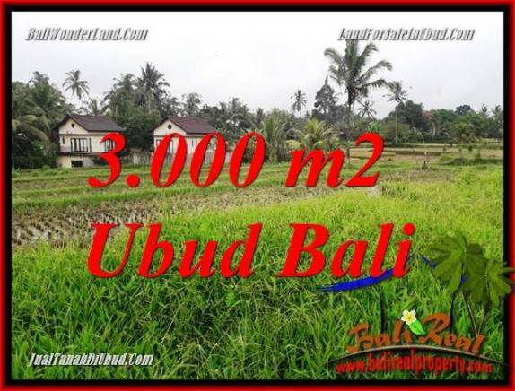 Tanah Dijual di Ubud Bali 3,000 m2  View sawah dan pangkung