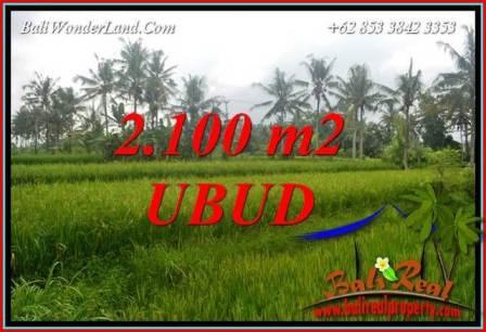 Tanah Murah jual di Ubud 2,100 m2  View Sawah