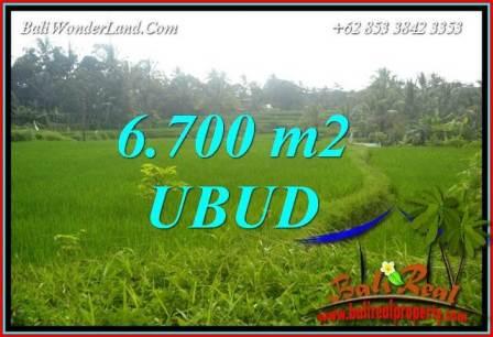 Tanah di Ubud Dijual Murah 6,700 m2 di Ubud Tegalalang