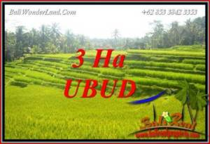 Tanah di Ubud Bali Dijual 300 Are View sawah, tebing dan sungai