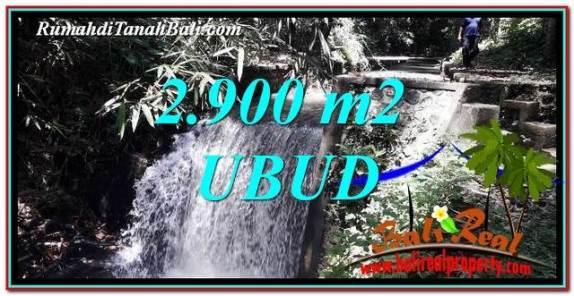 TANAH MURAH JUAL di UBUD BALI 2,900 m2  View Hutan dan Sungai