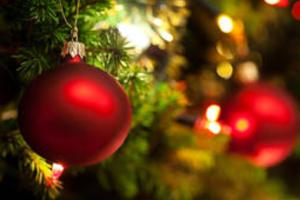 tanahoy.com Christmas