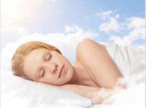 tanahoy.com dreaming