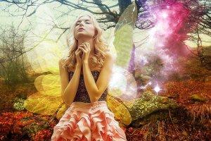 tanahoy.com fairies