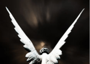 tanahoy.com guardian_angel_protection2