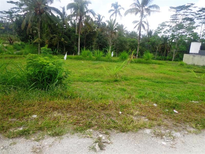 Tanah dijual di Ubud view sawah (TJUB107)