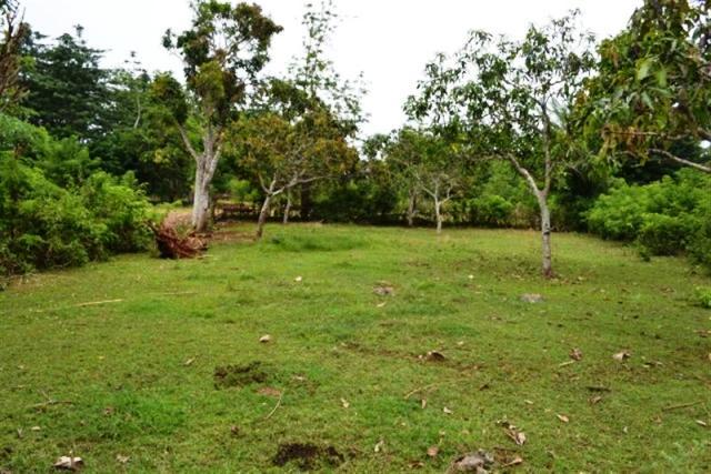 Jual tanah di Jimbaran 14 Are Dekat Pecatu graha di Jimbaran