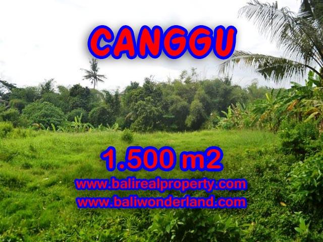 Tanah di Canggu Bali dijual 1,500 m2 dekat sungai di Canggu pererenan