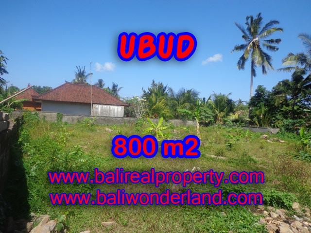 Jual tanah di Bali 8 Are di Dekat sentral Ubud