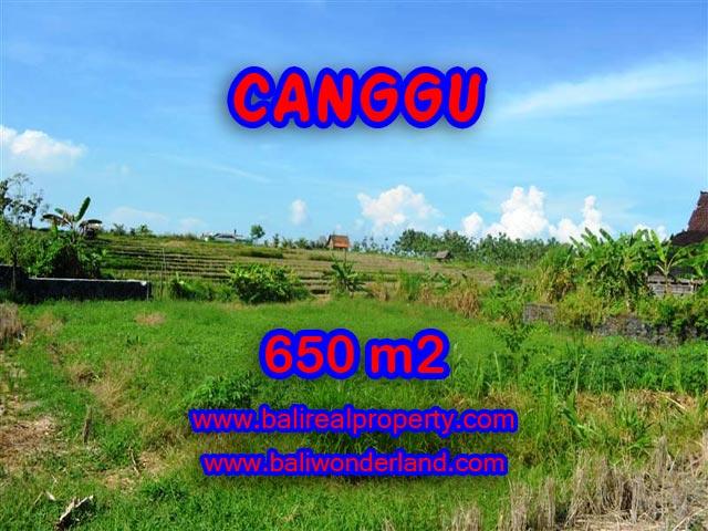 Tanah dijual di Bali 650 m2 View sawah di Canggu Batu Bolong