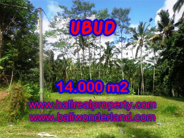 Tanah di Bali dijual 14.000 m2 di Ubud Payangan