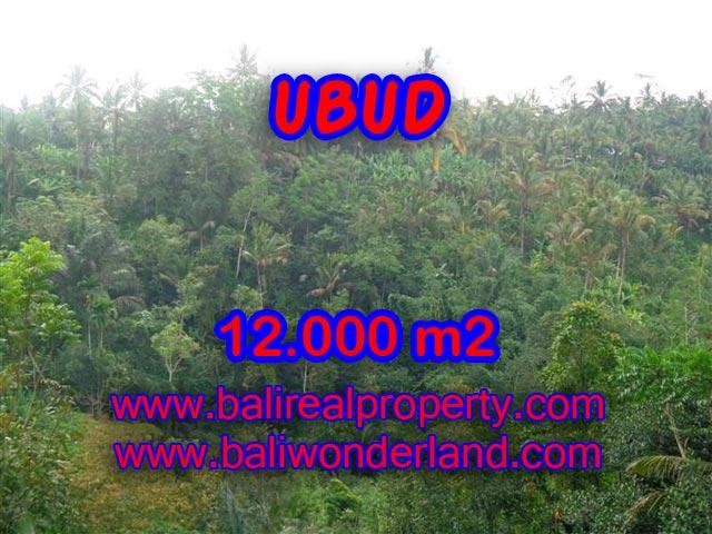 Jual tanah di Ubud Bali 12.000 m2 view tebing dan sungai di Ubud Payangan