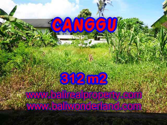 Investasi Properti di Bali - Murah ! Tanah di CANGGU Bali Dijual TJCG145