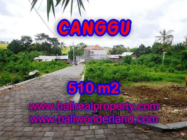 DIJUAL TANAH MURAH DI CANGGU BALI TJCG150 - INVESTASI PROPERTY DI BALI