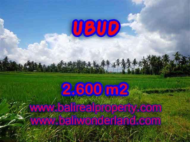 JUAL MURAH TANAH DI UBUD BALI TJUB374 - PELUANG INVESTASI PROPERTY DI BALI