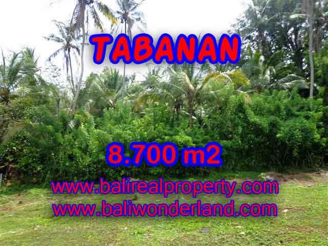 JUAL TANAH DI TABANAN MURAH TJTB115