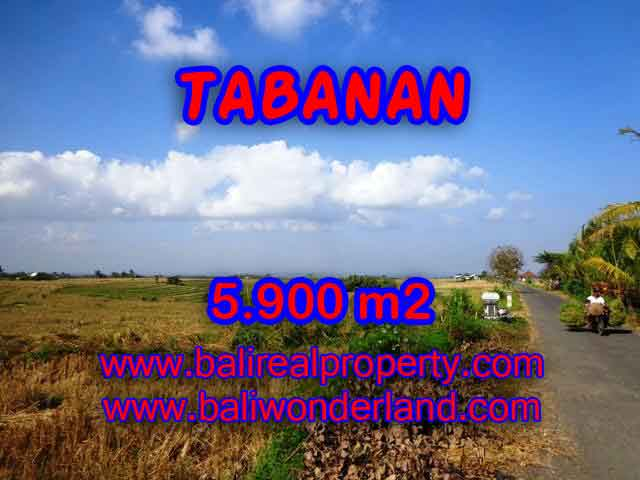 TANAH DIJUAL DI TABANAN RP 750.000 / M2 - TJTB131