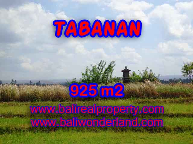 JUAL TANAH DI TABANAN BALI MURAH CUMA RP 1.000.000 / M2