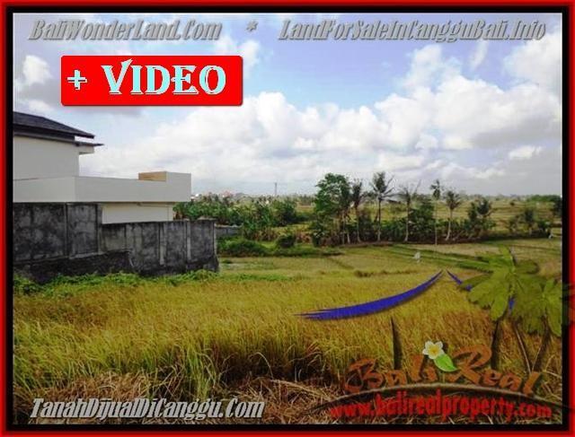 TANAH MURAH JUAL CANGGU 5 Are View sawah lingkungan villa