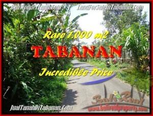 TANAH MURAH di TABANAN BALI Untuk INVESTASI TJTB171