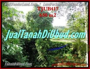 TANAH di UBUD DIJUAL 6.5 Are di Sentral Ubud