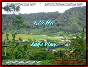 TANAH MURAH JUAL di TABANAN BALI 125 Are view danau buyan dan gunung