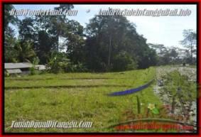 JUAL TANAH MURAH di CANGGU BALI 4.3 Are View sawah dan sungai, gunung link villa