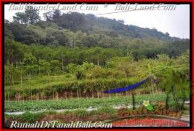 TANAH MURAH JUAL di TABANAN BALI 520 Are View gunung dan danau buyan