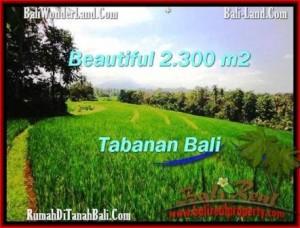 TANAH di TABANAN DIJUAL TJTB209