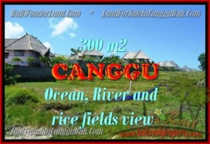 JUAL TANAH MURAH di CANGGU BALI 980 m2  View Sawah, Sungai dan laut
