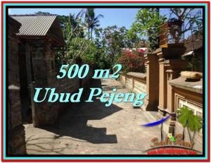 DIJUAL TANAH di UBUD BALI 500 m2 di Ubud Pejeng
