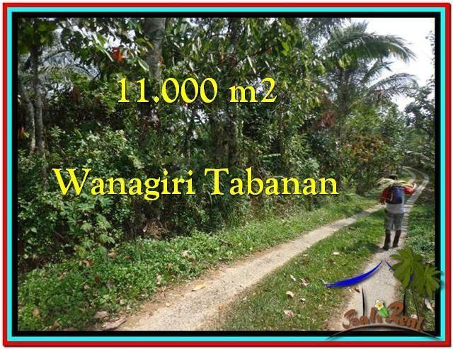 TANAH di TABANAN DIJUAL TJTB213