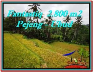 JUAL TANAH MURAH di UBUD BALI 2,800 m2 di Ubud Tampak Siring
