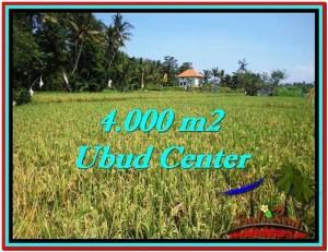 TANAH DIJUAL MURAH di UBUD 4,000 m2 di Sentral Ubud