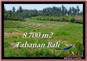 JUAL TANAH MURAH di TABANAN 87 Are di Tabanan Selemadeg