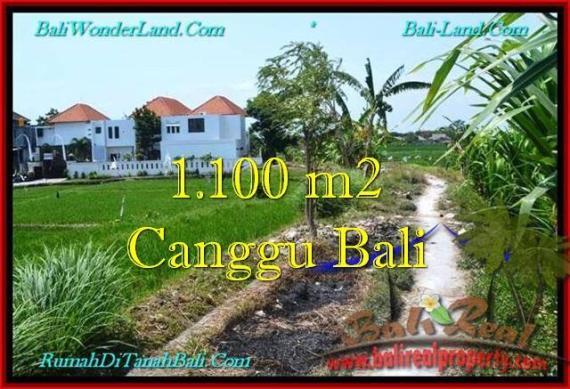 TANAH DIJUAL di CANGGU 11 Are View sawah, lingkungan villa