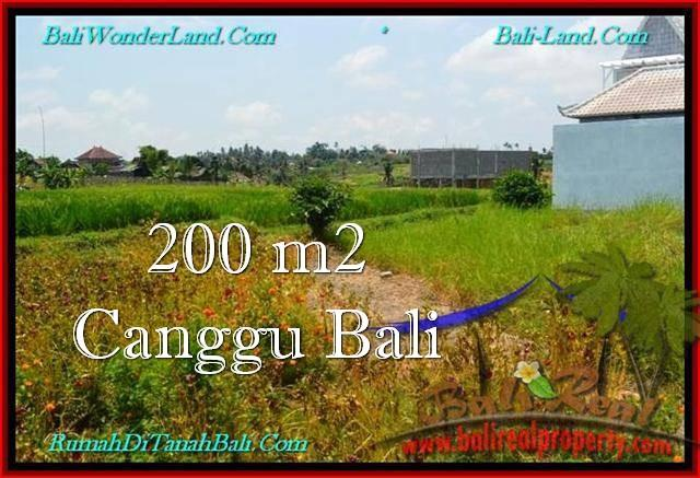 DIJUAL MURAH TANAH di CANGGU BALI 200 m2  View sawah, lingkungan villa