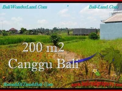 DIJUAL TANAH MURAH di CANGGU BALI Untuk INVESTASI TJCG191