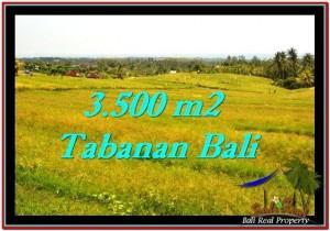 JUAL TANAH MURAH di TABANAN BALI 3,500 m2 di Tabanan Selemadeg