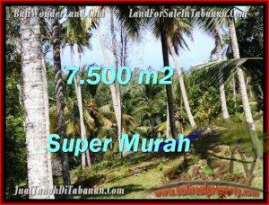 JUAL TANAH di TABANAN 7,500 m2  View Kebun dan sungai