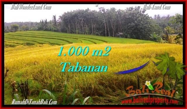 JUAL TANAH MURAH di TABANAN BALI Untuk INVESTASI TJTB273