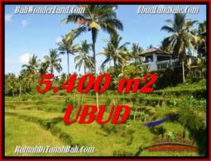 JUAL TANAH MURAH di UBUD 5,400 m2 di Ubud Tegalalang