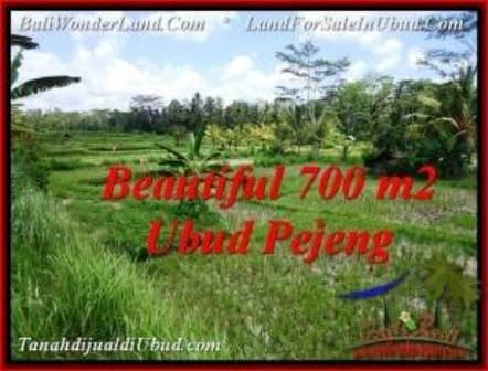 TANAH DIJUAL MURAH di UBUD 700 m2 di Ubud Pejeng