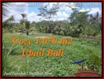 JUAL TANAH MURAH di UBUD 1,070 m2  View Sawah dan kebun
