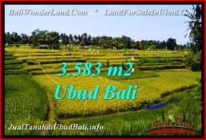 JUAL TANAH di UBUD BALI Untuk INVESTASI TJUB542