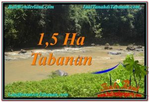 TANAH MURAH di TABANAN BALI TJTB304DIJUAL TANAH di TABANAN BALI 15,000 m2 di Tabanan Selemadeg JUAL TANAH MURAH di TABANAN BALI Untuk INVESTASI TJTB304
