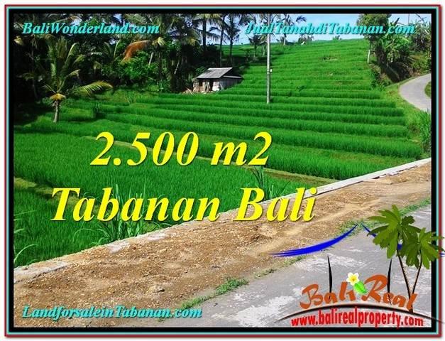 TANAH di TABANAN BALI DIJUAL MURAH 25 Are di Tabanan Penebel