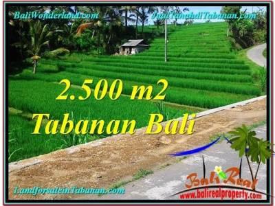 INVESTASI PROPERTI, DIJUAL TANAH di TABANAN TJTB305